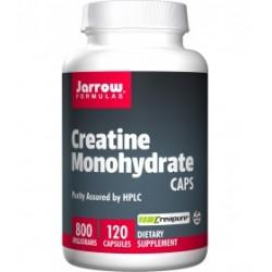 Creatine Monohydrate - Kreatyna 800 mg (120 kaps.) Jarrow Formulas
